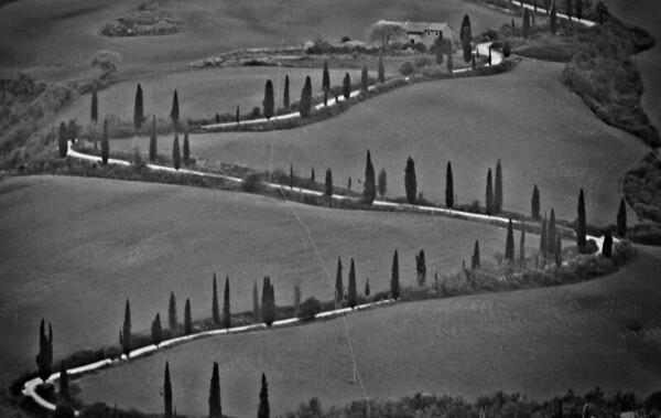 Tuscany 2019-10-1015