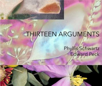 Thirteen Arguments