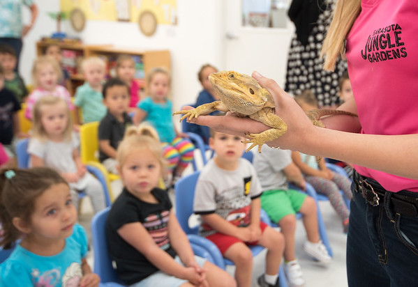 Sarasota Jungle Gardens brought some animals for the kids to meet today!