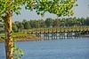 Patton Park on White Eagle