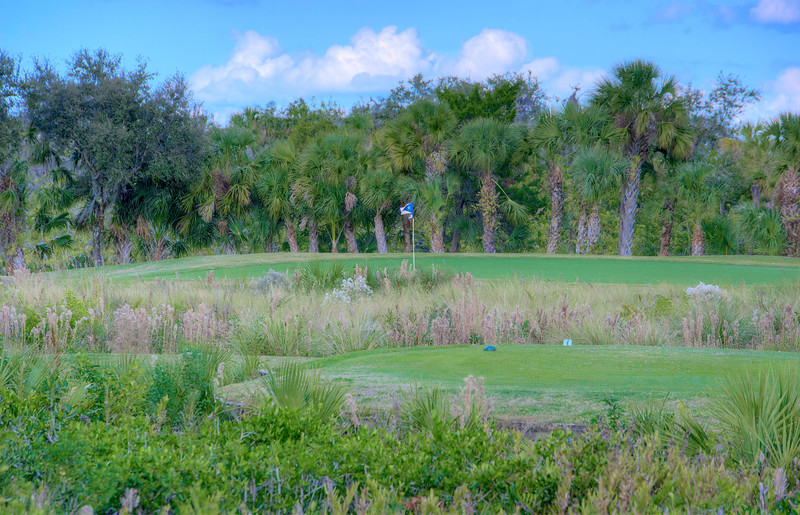 Waterlefe Golf and Club - Hole #15
