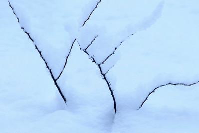 Snow_Design_1a_KKD3817