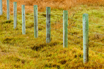 Fence_Field_Design_KKD7050