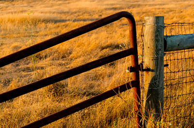 Old_Gate_In_Evening_f16_KKD6784