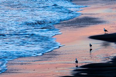 Three_Gulls_Sunset_Beach_KKD7217
