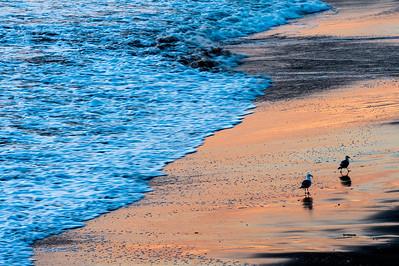 Two_Gulls_Sunset_Beach_KKD7203