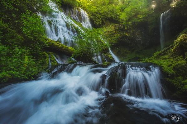 Primitive Waters