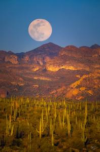 Desert Moonrise (2019)