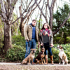 The Deeb Family | Fort Collins, CO Family & Pet Portraits Photographer
