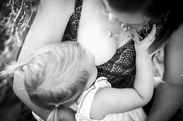 Fry Family | Fort Collins, CO Children's Portraits Photographer