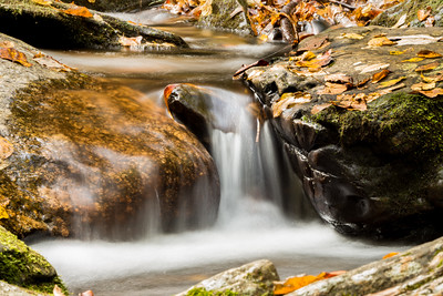 Peaceful Streams