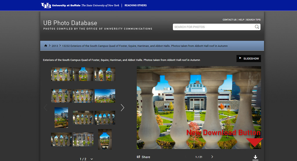 """As we have updated our system, the button layouts have changed as well.<br /> <br /> If you would like to download an image, you must begin by selecting your desired image. Once there, click the """"Download"""" icon that is indicated in the image on the left."""