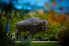 The Bronze Bison on North Campus photographed with fall colors. <br />  <br /> Photographer: Douglas Levere