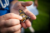 Students in Ecological Methods class tag monarch butterflies, as part of a course taught by Nicholas Henshue in the Department of Environment and Sustainability in the College of Arts and Sciences. The class was held at the Olmsted's RiverWalk Garden, in Buffalo, NY in September 2019.<br /> <br /> Photographer: Douglas Levere