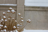 Exterior and detail shots of South Campus after snowfall<br /> <br /> Photographer: Douglas Levere