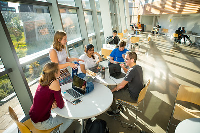 Student studying in groups in the Davis Hall atrium on North Campus.  Photographer: Douglas Levere