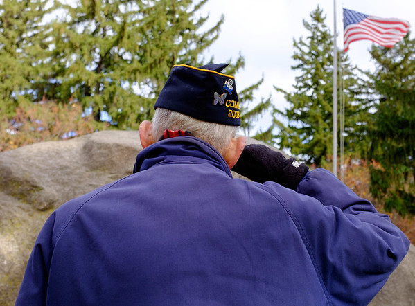 JOED VIERA/STAFF PHOTOGRAPHER-Lockport, NY-  David Knight salutes Old Glory after placing a wreath at the  memorial in Outwater Park during the Veterans Day ceremony.