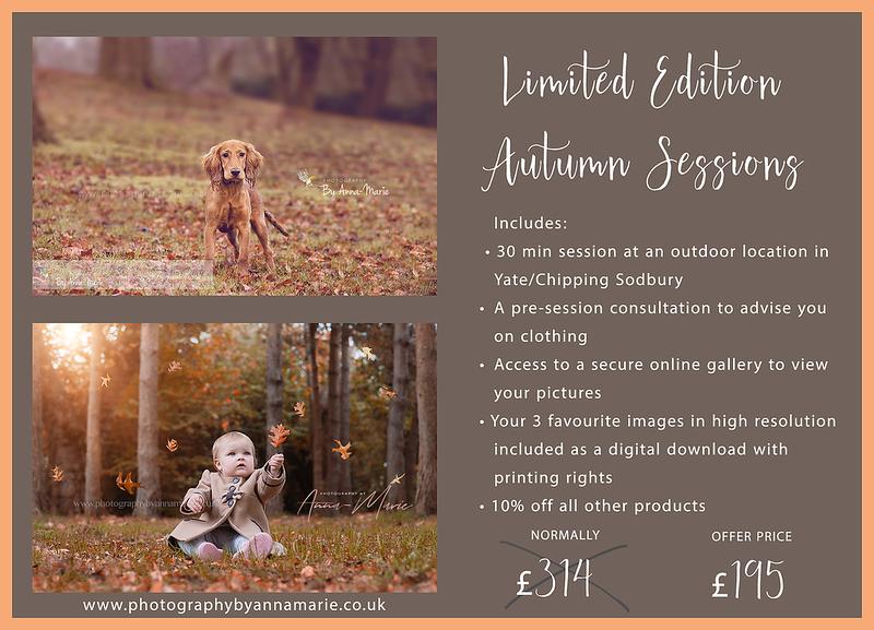 Autumn Mini Sessions