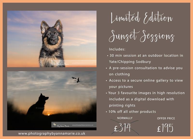 Sunset Mini Sessions
