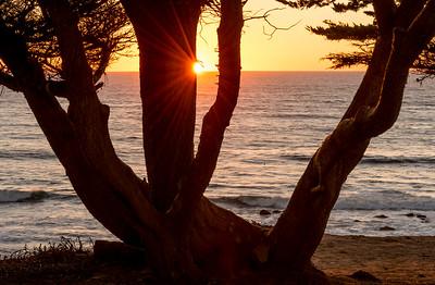 Coastal Sunset and Sunburst