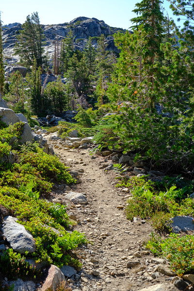 Trail near Fontanillis Lake