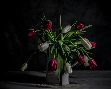 Wilting tulips