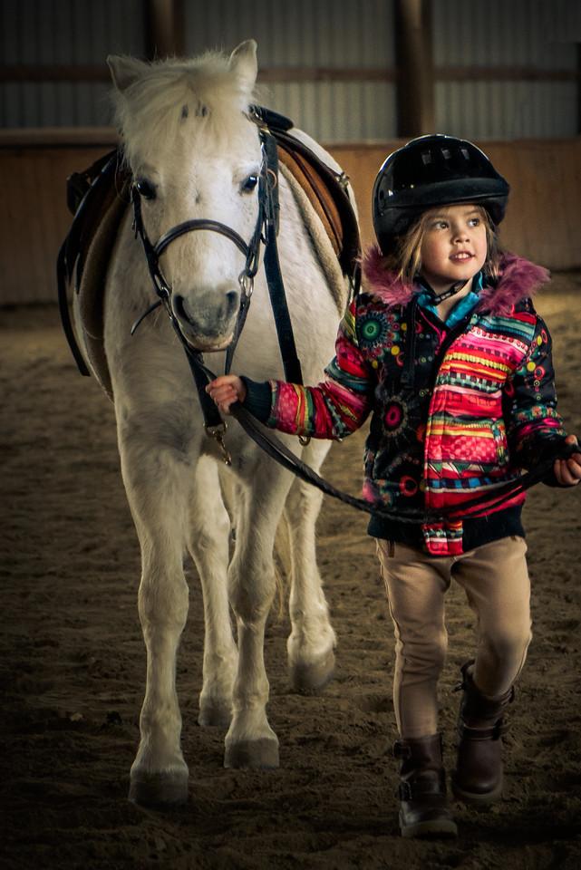 Pony Fever