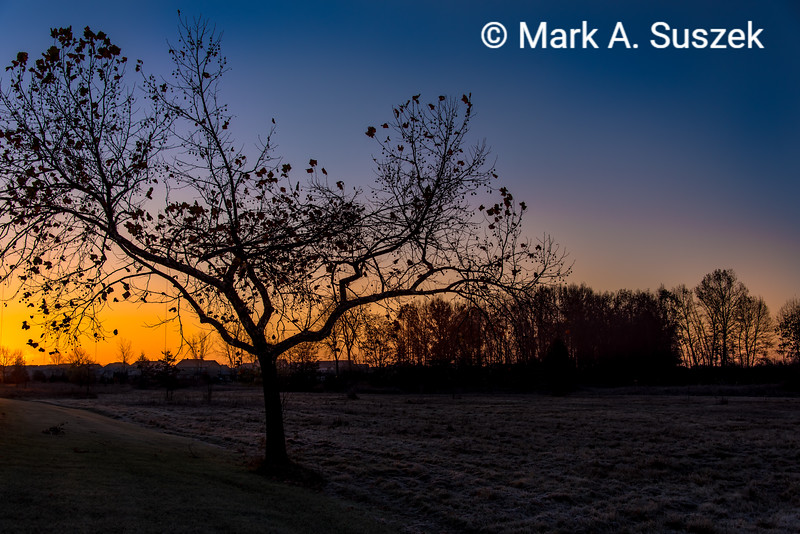 Sunset, Willow M.P.