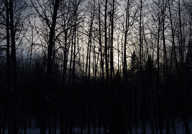 Night Descending
