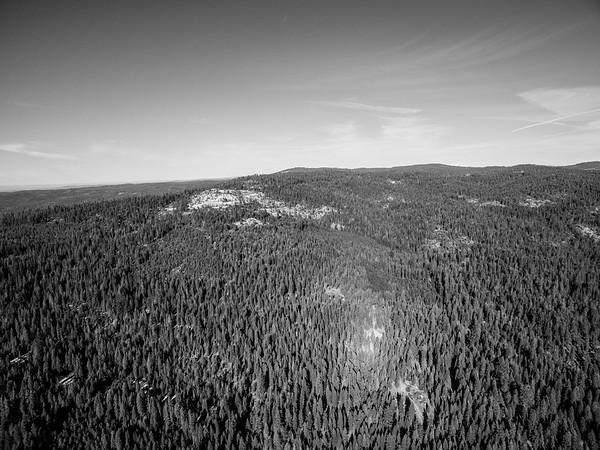 Aerial Scenery. State Route 88. Eldorado National Forest, CA, USA