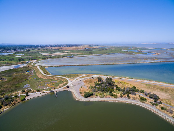 Aerial Scenery. Starting from the bottom, Shoreline Lake, Casey Forebay (Left), Shoreline Slough, Charleston Slough, and Egret Pond (Left). Shoreline Park - Mountain View, CA, USA