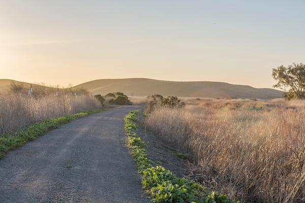 HDR Composition. Coyote Hills Regional Park - Fremont, CA, USA