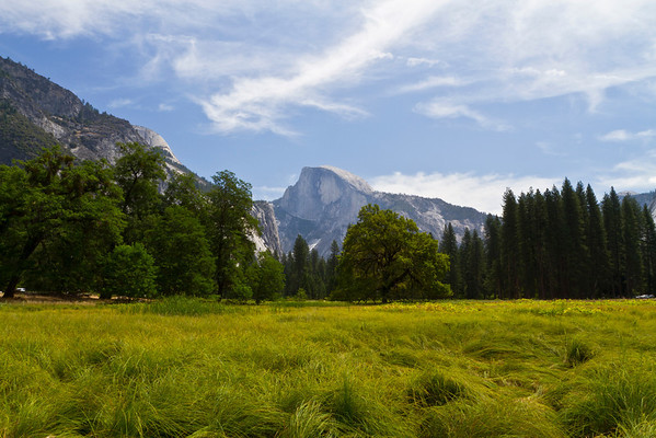 Half Dome. Cook's Meadow - Yosemite National Park - California, USA
