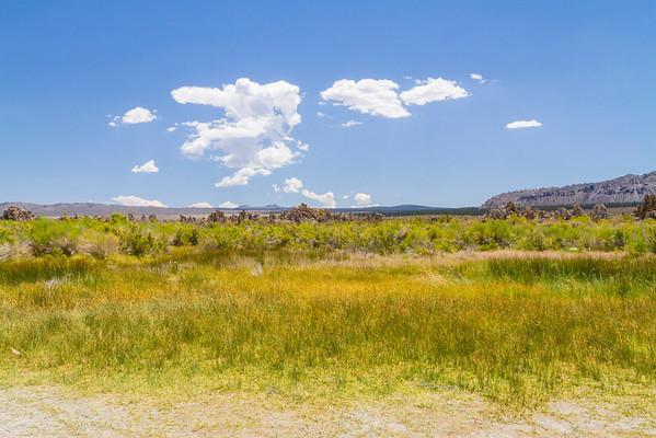 Tufas. Mono Basin - Lee Vining, CA, USA