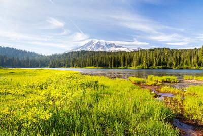 Reflection Lake. Mount Rainier National Park - Washington, USA