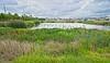 10983 Verawood Drive - Riverview Fl