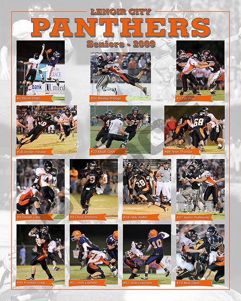 LCHS - Team Senior Poster
