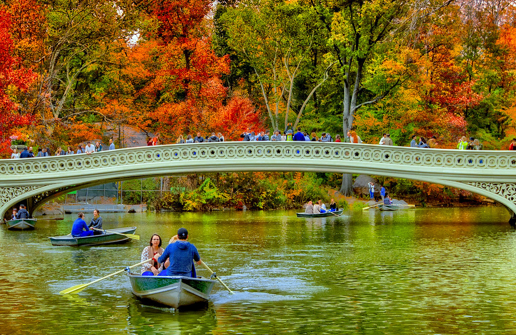 Bow Bridge, Fall in Central Park NYC