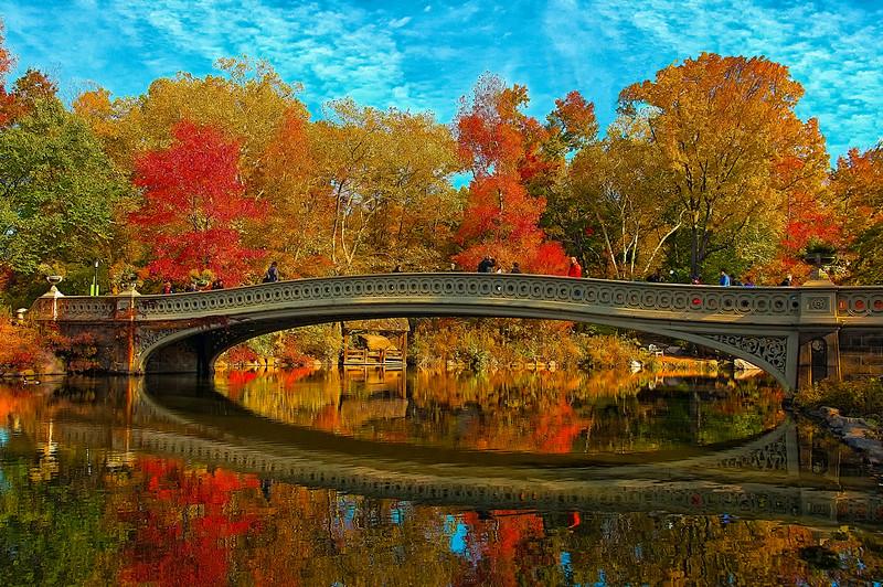 Autumn Always on My Mind!