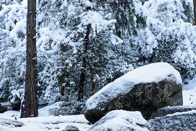 Yosemite_snow_scene_KKD3883