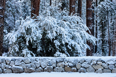 Rock_Wall_Snow_Trees_KKD3867