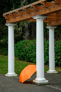 Orange Umbrella & White Columns