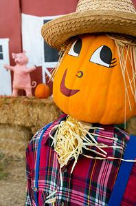 Scarecrow_Pig_Barn_1_KKD7352