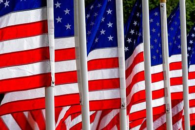 American_Flag_Tele-Design_DAK8415