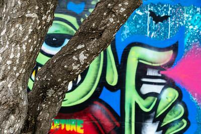 Tree_Trunks_&_Skatepark_Mural_DAK7092