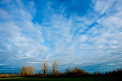 LandscapeOR_Horiz_KAD2548