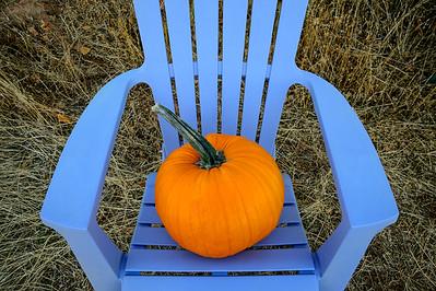 PumpkinChair2a-Horiz_KDK1267