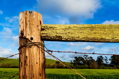 Country_Fence_Frame_DAK3721