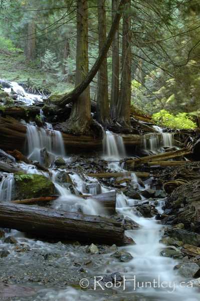 Stream below Bridal Veil Falls in Bridal Veil Falls Provincial Park near Chilliwack, British Columbia. © Rob Huntley
