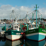 Harbor of Paimpol  -  Brittany  -  France